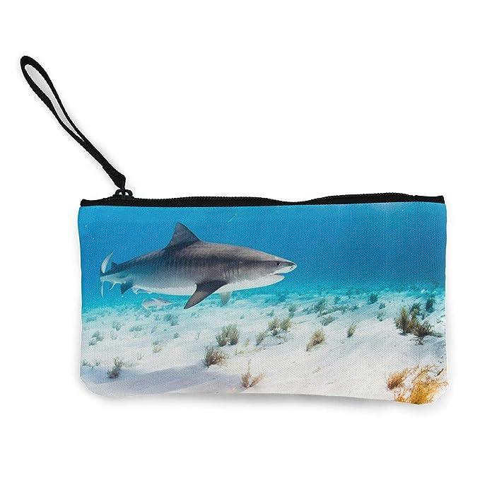 Amazon.com: Cartera de tiburón de tiburón, moneda, moneda ...