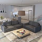 SHIITO Conjunto de Sofas de Tres y Dos plazas tapizado en ...