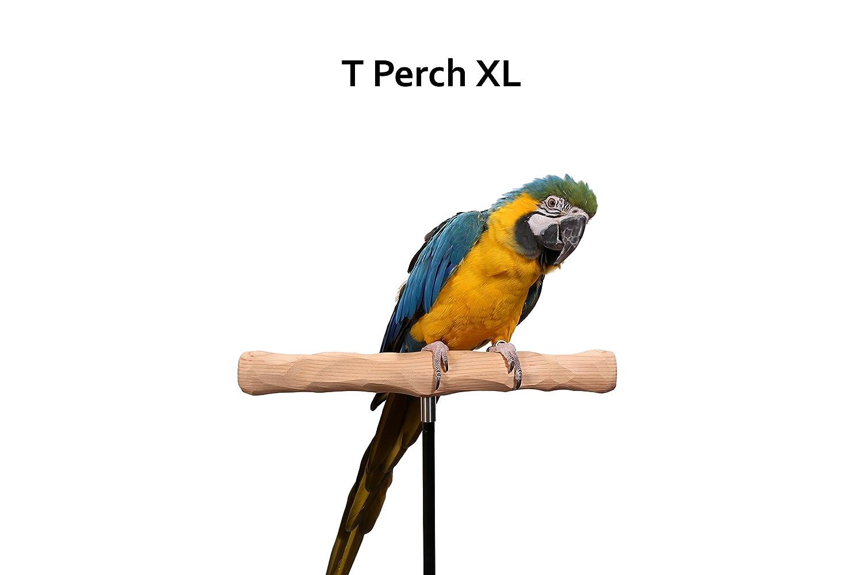 Amazon.com: Parrot Formación Perch Kit, Extra grande: Mascotas