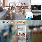 Pet Camera,Dog Camera 1080P HD Wireless IP Camera