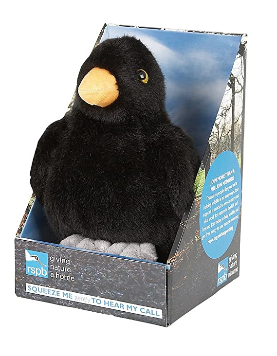 Amazon.com: Ravensden RSPB Singing Blackbird Soft Toy (Packing May Vary) by Ravensden RSPB: Toys & Games