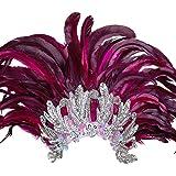 Samba Bijoux de Tête Accessoire En Plumes Rio Rio Bijou de Cheveux En Plumes Brésilien Plume Tête Bijoux Burlesque Hairband Bandeau Déguisement Costume Accessoire