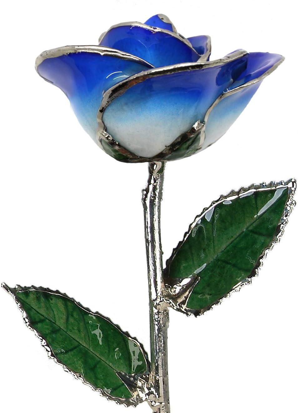 Living Gold Real Rose Dipped in Platinum 2-Tone Dark Blue