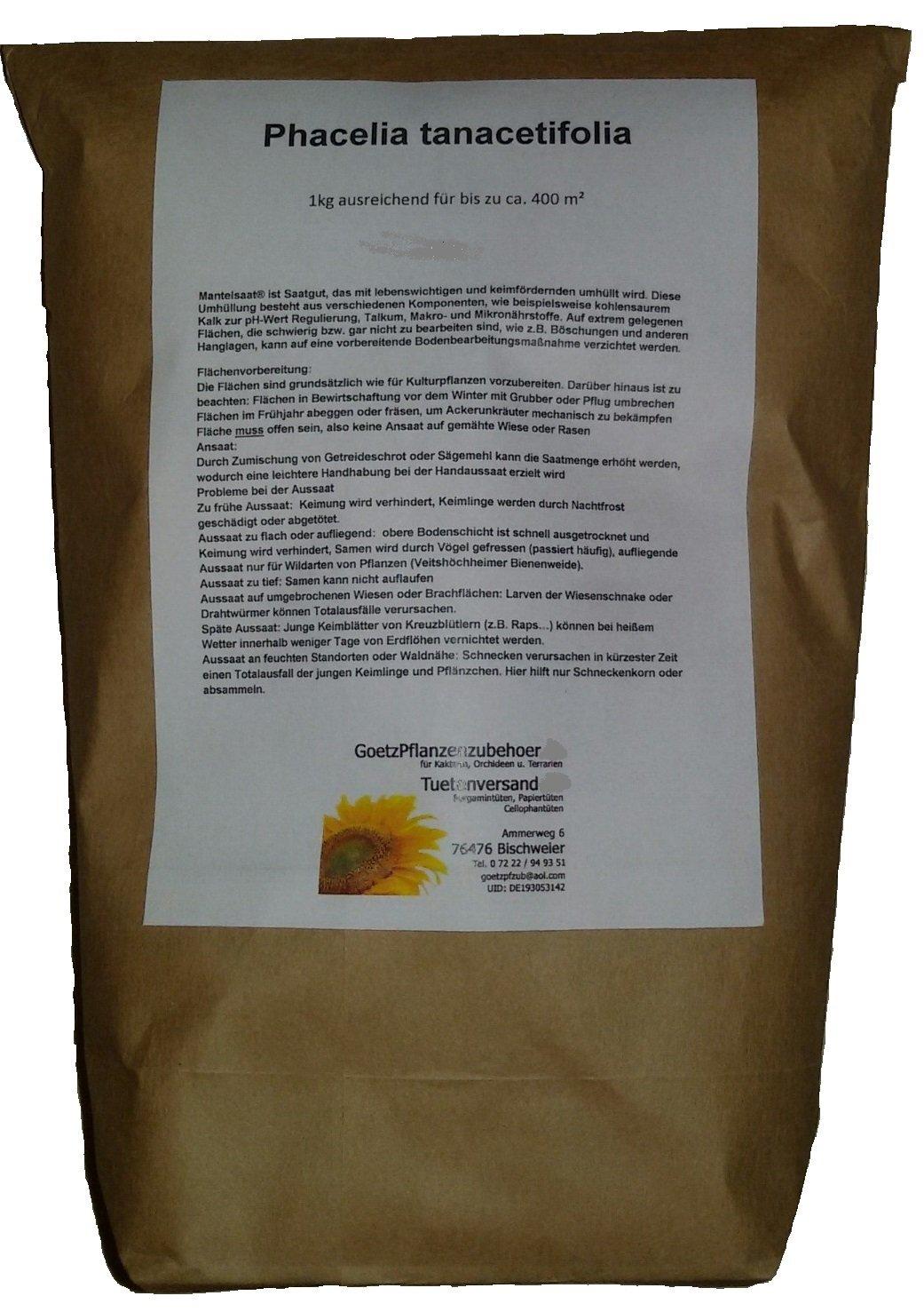 6kg Phacelia tanacetifolia (Bienenfreund, Bienenweide) für bis zu 2400m²
