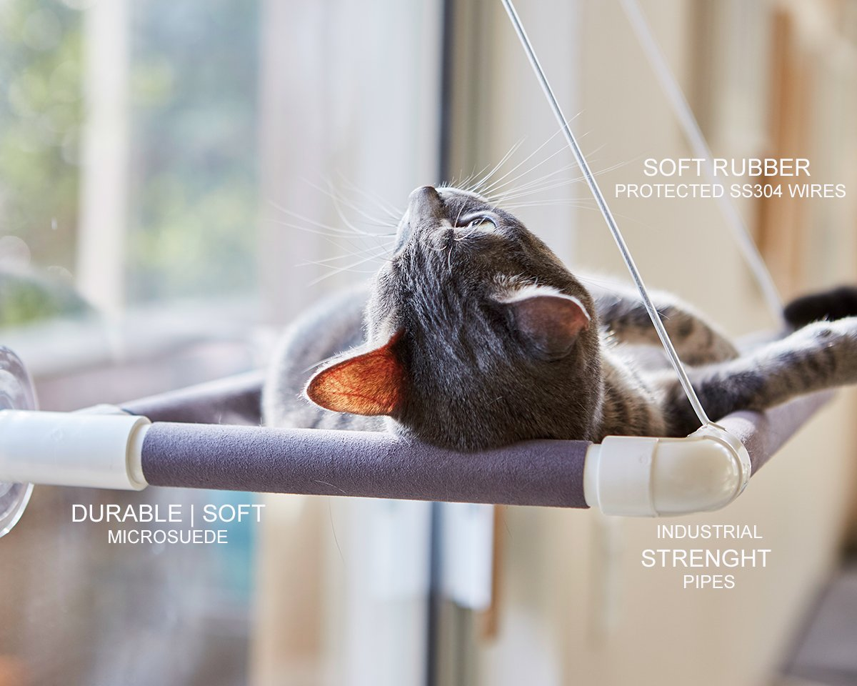 Amazon.com : Cat Window Perch Bed | Kitty Window Bed Hammock | 50lbs ...