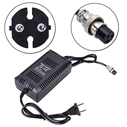 Wingsmoto Cargador para batería de plomo y ácido de 24 V, para scooter y triciclo eléctrico (enchufe europeo)