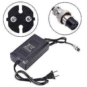 Wingsmoto Cargador para batería de plomo y ácido de 24 V, para scooter y triciclo eléctrico (enchufe europeo): Amazon.es: Coche y moto