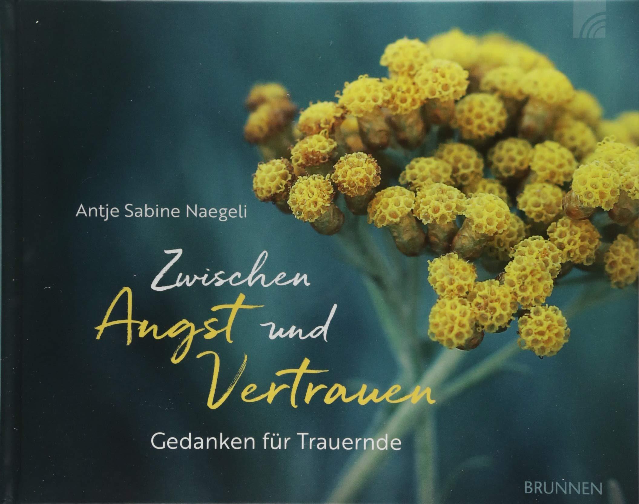 Zwischen Angst und Vertrauen: Gedanken für Trauernde Gebundenes Buch – 20. Juli 2018 Antje Sabine Naegeli Brunnen 3765532045 Geschenkband