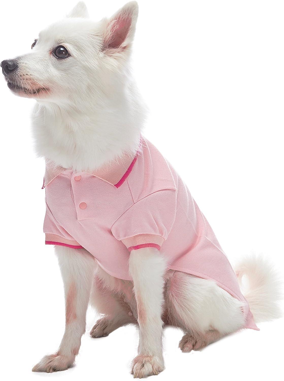 Blueberry Pet Poloshirt T-Shirt Kleid Henry das Zebra Baumwolle Hundeshirt