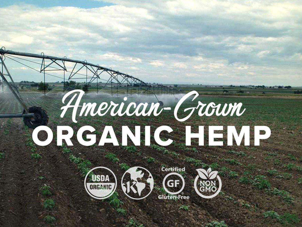 Natural Native Hemp Tincture Oil (Spearmint, 3000 mg) Therapeutic Grade for Anxiety Relief, Chronic Pain, Sleep, Nausea, Arthritis, Joint Pain - USDA Organic Hemp, Gluten-Free, Non-GMO