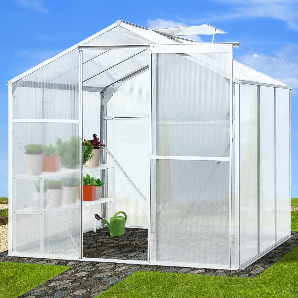Jago – Invernadero policarbonato 5, 36 M³ ventana vent Jardín Plantas Invernadero: Amazon.es: Jardín