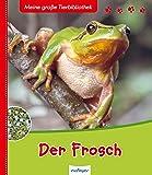 Der Frosch Amazon De Daniel Moignot Friederike Naroska border=