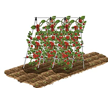 ecotrellis a frame trellis plant ladder support ladder tomato trellis