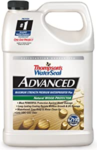 Thompsons WaterSeal TH.A21711-16 Natural Wood Protector
