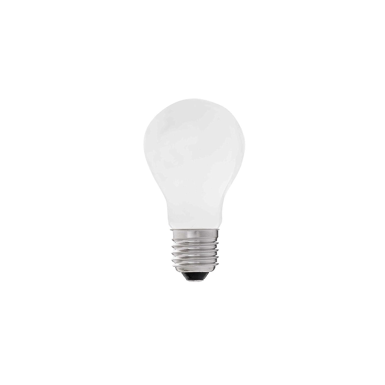 Faro Barcelona 17486 - Bombilla Led A60 E27 LED 8W 4000K: Amazon.es: Iluminación