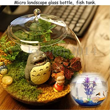 Buy Generic Large Glass Terrarium Micro Landscape Container Bell