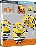 Gru 3: Mi Villano Favorito (BD 3D + BD) - Edición Especial Metal Limitada [Blu-ray]