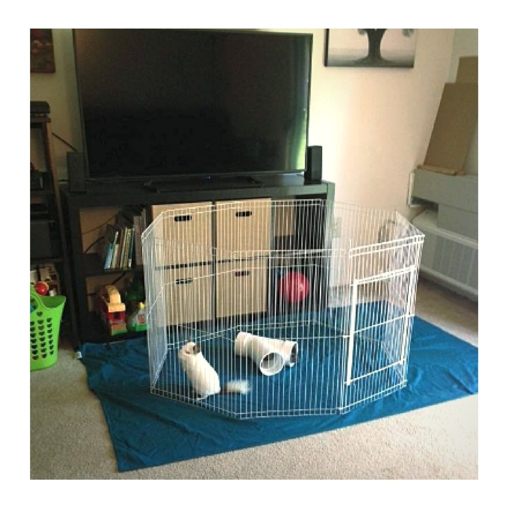 Chinchilla ExercisePen with Door Playpen Indoor Folding Cage Small Animal Portable Pet & eBook by OISTRIA