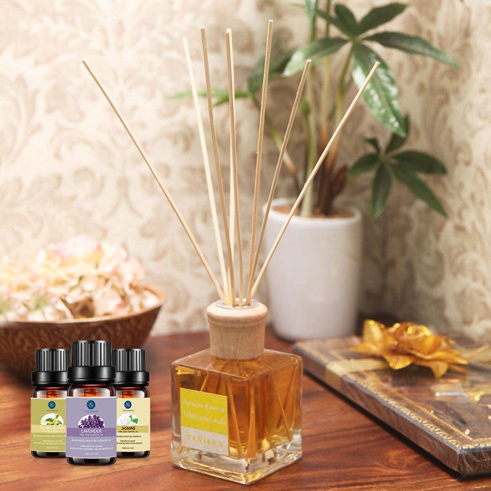 Premium Essential Oils Set