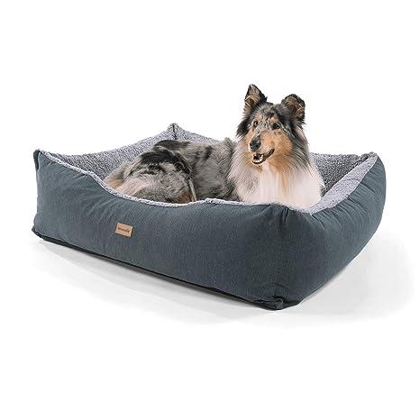 Homeoutfit24Lucky - Cesta para perro | lavable | cama con cojín reversible