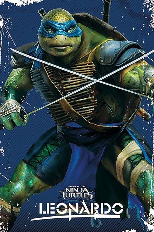 Amazon.com: Empire Merchandising 667335 TMNT Teenage Mutant ...