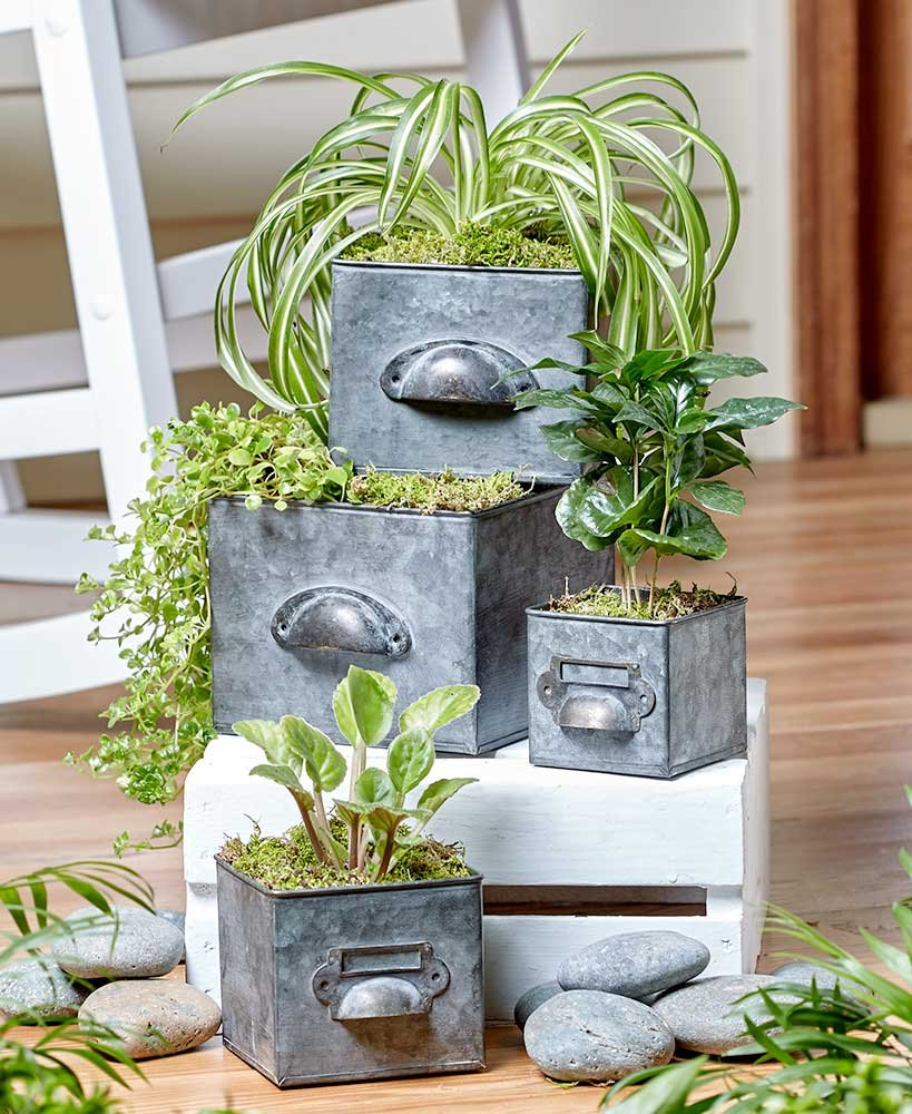 Galvanized Drawer Planters