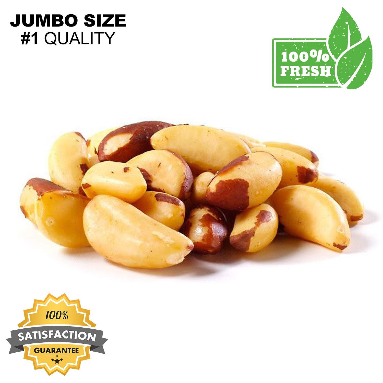 Brazil Nuts Raw No Salt , Fresh Premium Brazil Nuts Raw- No Salt - European Nuts (1 lb Bag Brazil Nuts)