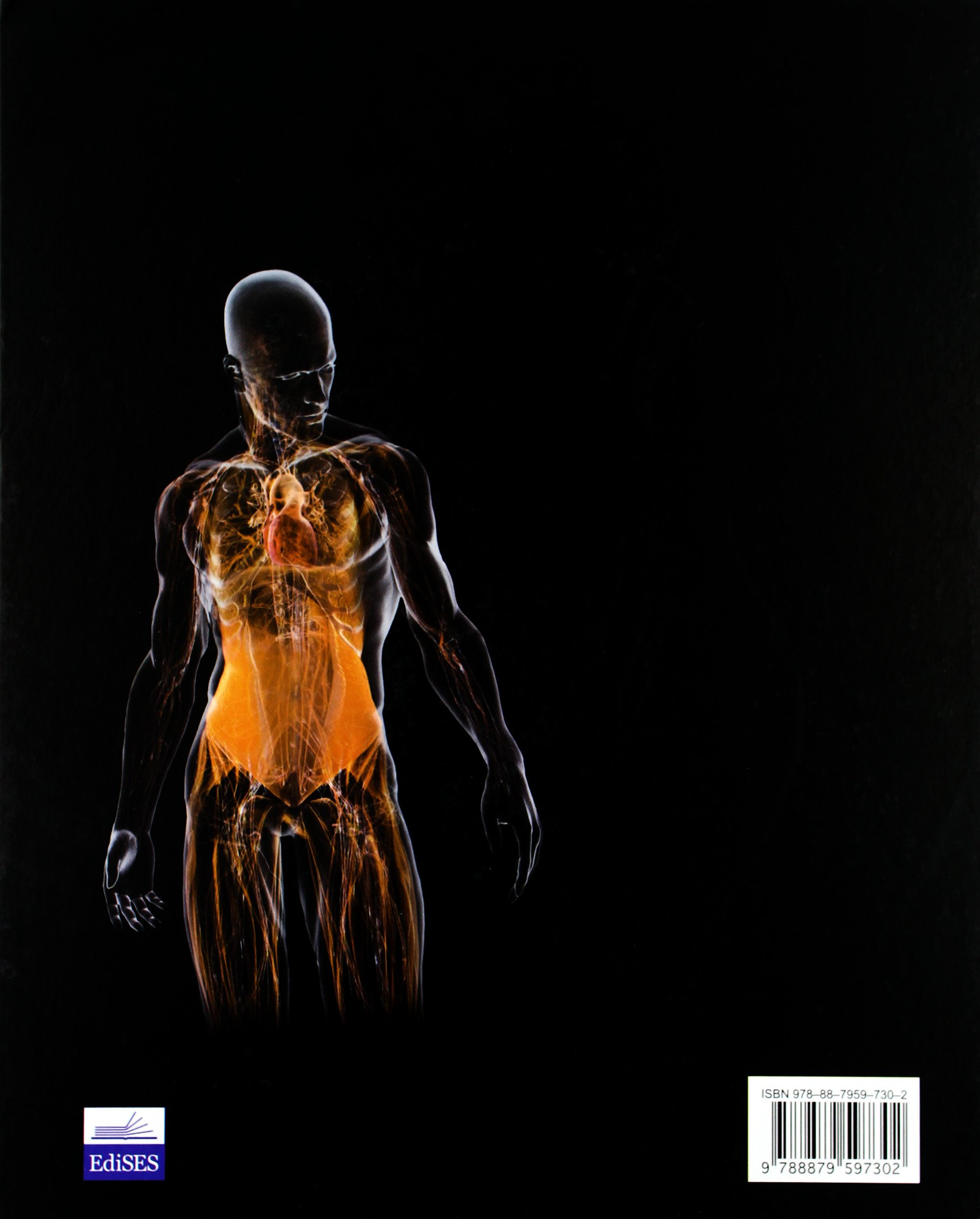 Anatomia umana: Amazon.de: Michael J. Timmons, Robert B. Tallitsch ...
