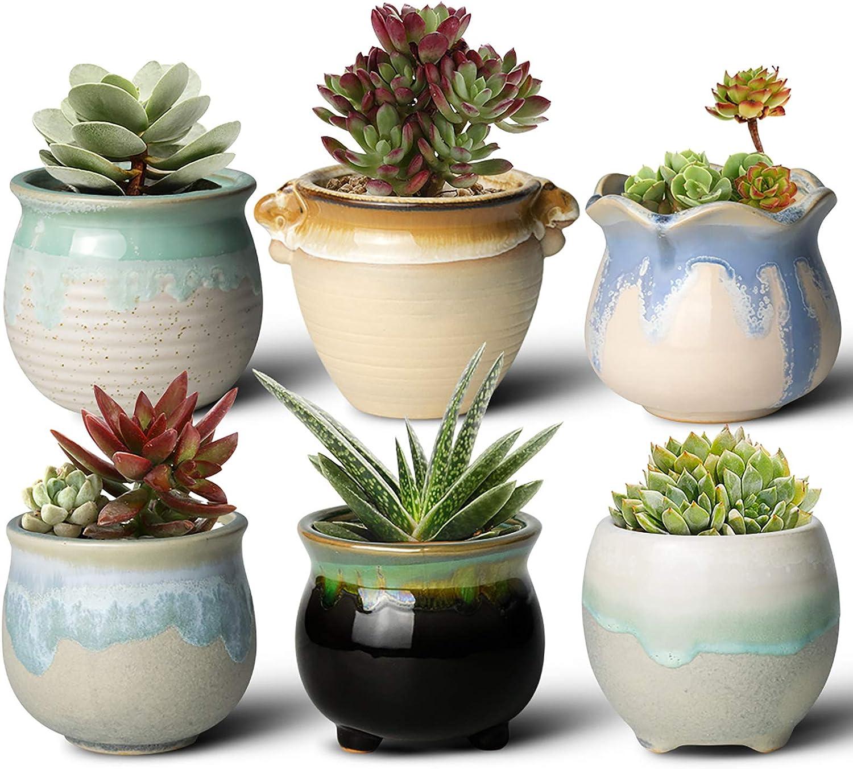 FairyLavie 3.5 Inch Succulent Pots