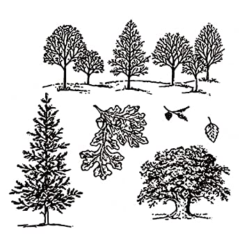 Timeracing 1Pc DIY Cutting Die Tree Carbon Steel Embossing Craft Scrapbooking Decor Silver