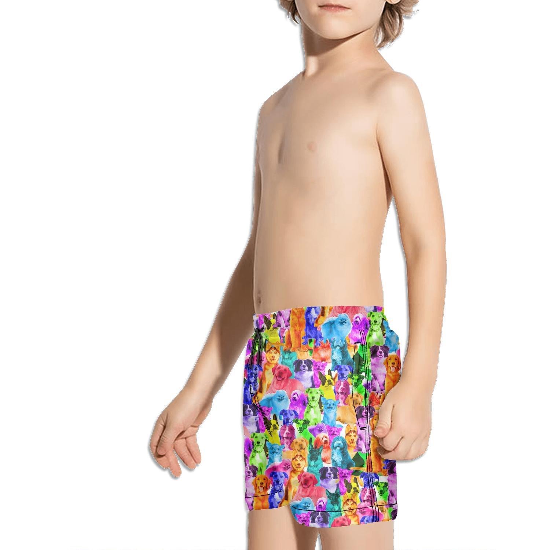 FullBo Rainbow Dogs Cats Horse Hippo owl Cow Little Boys Short Swim Trunks Quick Dry Beach Shorts