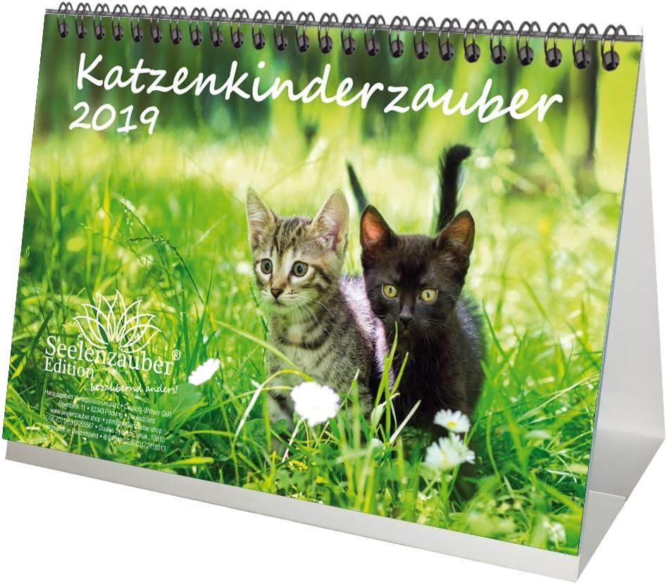 per gatti e cuccioli di gatto Seelenzauber set regalo con 1 biglietto di auguri e 1 biglietto di Natale Calendario da tavolo DIN A5