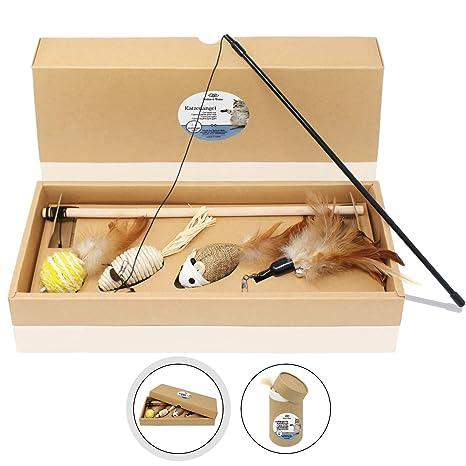 Amazy Caña de pescar para gato (2 cañas, 4 juguetes) - Set de ...