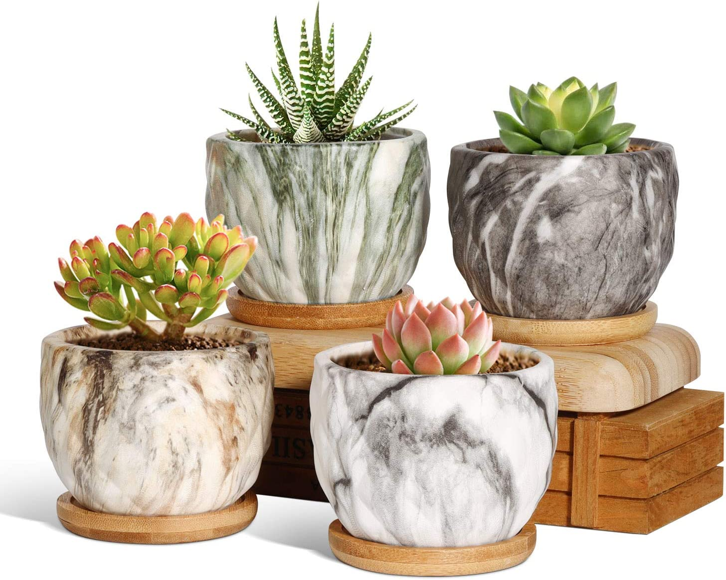 T4U Ceramic Succulent Pots 3 Inch Marbleize Collection Set of 4 with Trays, Small Modern Style Planter with Drainage Hole, Colorful Porcelain Herbs Cactus Container for Home and Office Decor