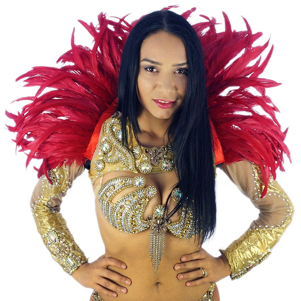 Feather Carnival Costume Samba Collar - Red Cosplay/Halloween Costumes