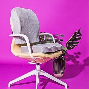 Orthopedic Support Seat Bundle