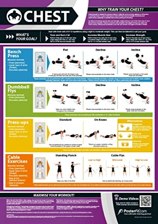 Chest Exercise | Full Chest Workout | Improves Strength Training |  Laminated Gym and Home Poster with Online Video Training Support | Size -  594mm x