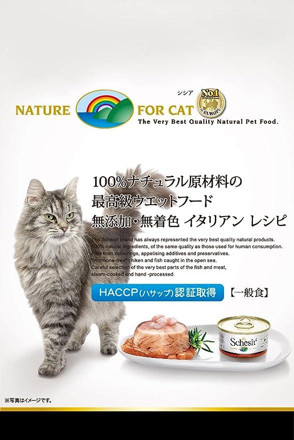 Schesir Multipack Gato 50 gr atún con Buey: Amazon.es: Productos para mascotas