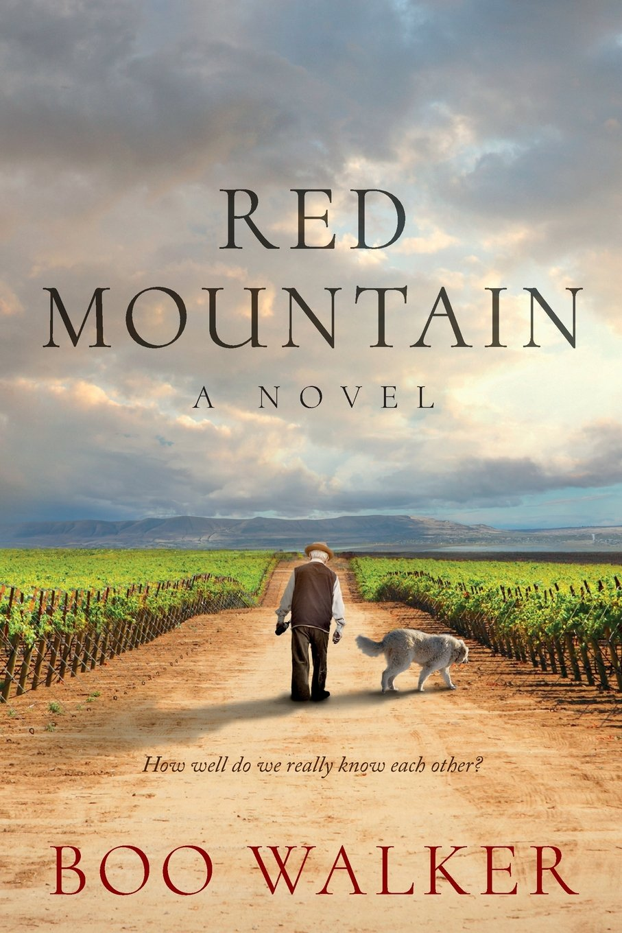 Red Mountain Novel Boo Walker product image