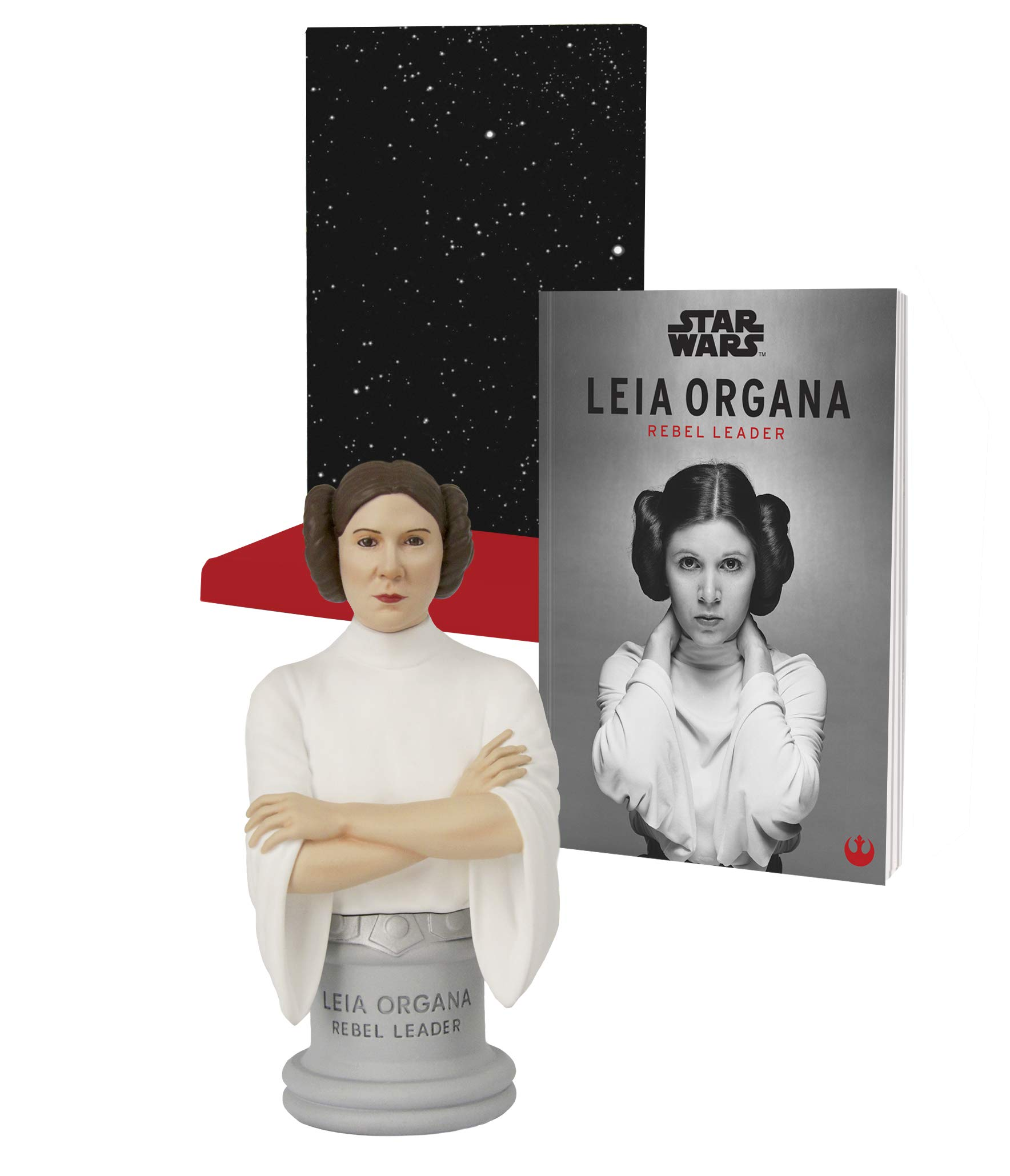 Star Wars™: Leia Organa Rebel Leader Box