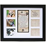 Amazon Com Pawprints Memorial Pet Tag Frame Pawprints