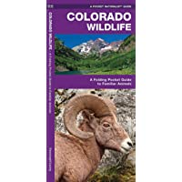 Colorado Wildlife: A Folding Pocket Guide to Familiar Animals (Wildlife and Nature Identification)
