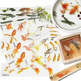 Amazon レジン 封入素材 フィルム シート 金魚イラスト 水草 夏 和風