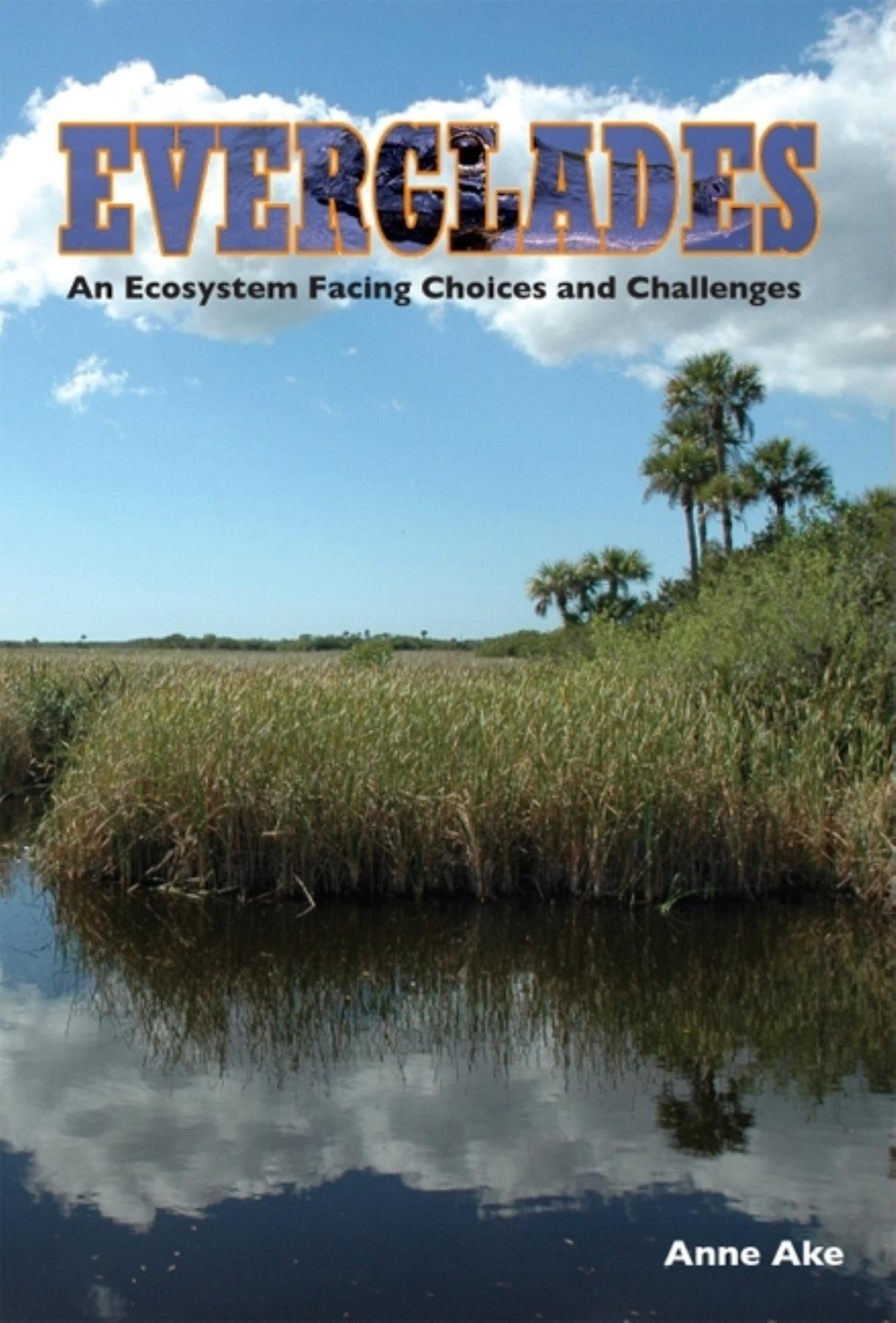 Everglades: An Ecosystem Facing Choices and Challenges pdf epub