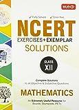 NCERT Exercises + Exemplar Solutions Mathematics - Class 12