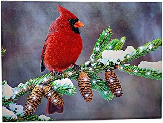Amazon Com Banberry Designs Winter Cardinal Print Led Light Up Christmas Canvas Picture Red Cardinal Bird On A Birch Branch With Pine Cones And Snowy Background 16 X 12 Posters Prints