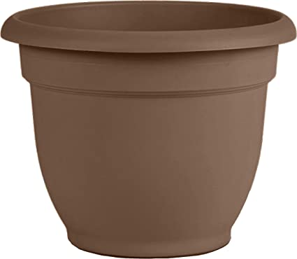 Bloem 20 56308ch Ariana Self Watering Planter 8 Chocolate 8 Browns Self Watering Planters Garden Outdoor