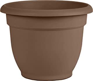 "product image for Bloem 20-56308CH Ariana Self Watering Planter, 8"", Chocolate, 8"", Browns"
