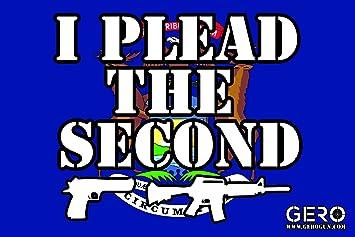 2nd Amendment Gun text gun rights NRA gun control decal sticker
