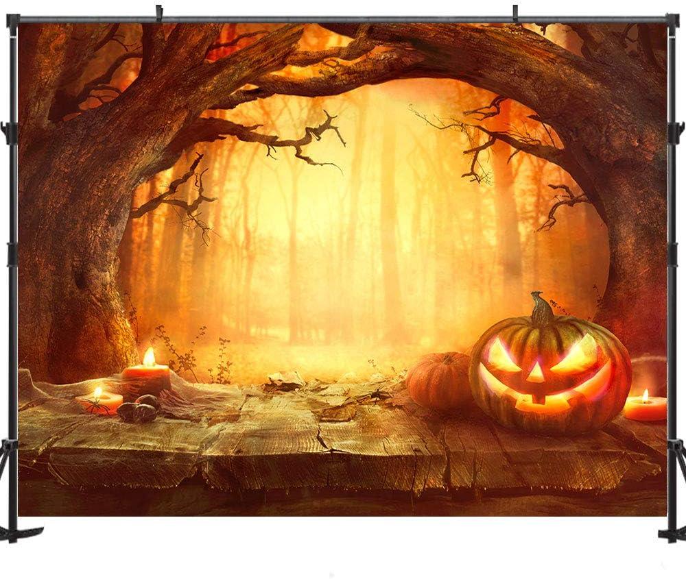 7x5 FT Fabric Photography Backdrop Halloween Horrible Castle Terror Lantern Backdrop for Studio Props Photo Backdrop 99-19